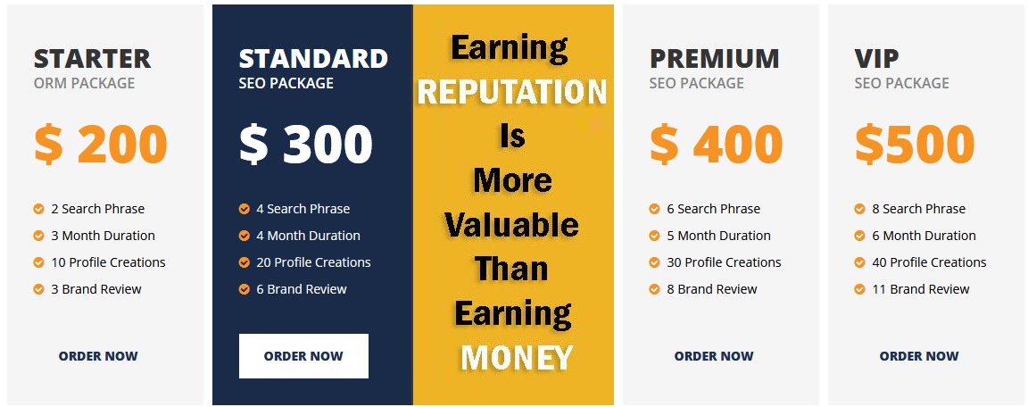 2019 ORM Services Monthly Pricing Announce By SEO Service In India - Package
